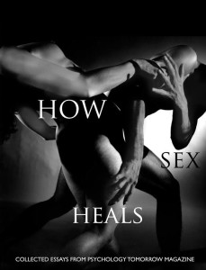 HowsexHeals-title-cover